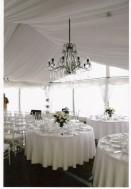 chandeliers (175w)